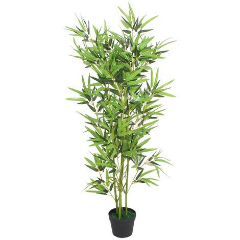 Planta de palma de bambú